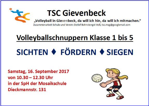 Volleyballschnuppern_Klasse_1 bis_5_575x412